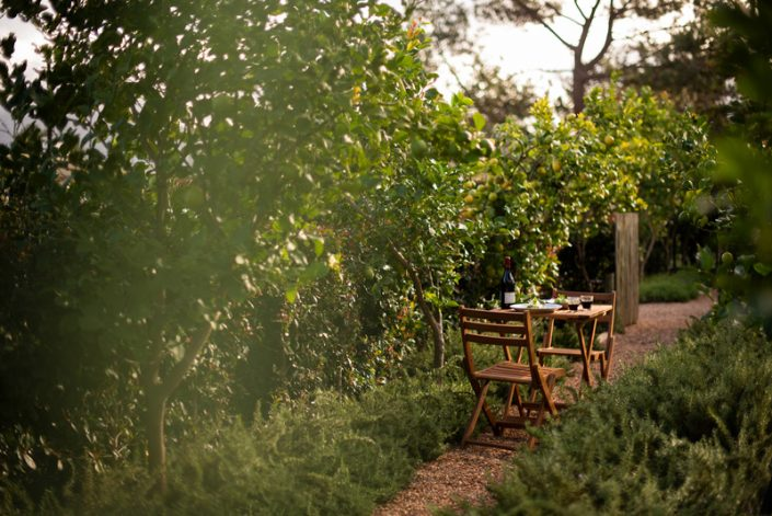 The Homestead Rustic Wedding Venues Cape Town
